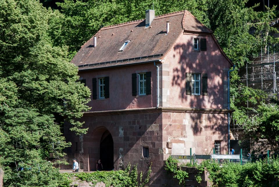 Heidelberg-21